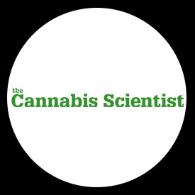 cannabis-scientist